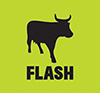 FLASH_LOGO_LO_RES_72dpi5